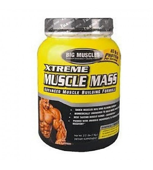 Big Muscle Xtreme Muscle Mass, Chocolate 2 lb