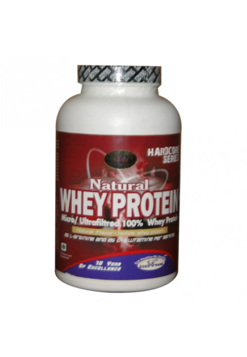 GDYNS NATURAL WHEY PROTEIN 210GM