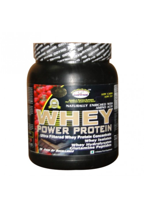 GDYNS Whey Power Protein 500gm