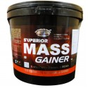 GDYNS Superior Mass Gainer 4500gm