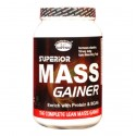 GDYNS Superior Mass Gainer 1000gm
