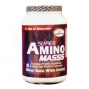GDYNS Super Amino Masss 1000gm