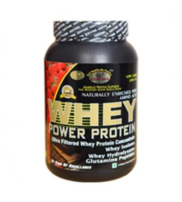 GDYNS Whey Power Protein 1000gm